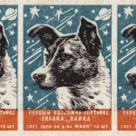 """A Soviet matchbox with a heroic Laika, the first dog in space. Caption: """"First satellite passenger— the dog, Laika."""" Want it on a shirt, or a really wonderful mug?"""